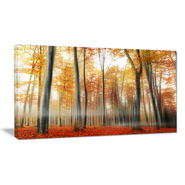 Designart Red And Yellow Leaves In Fall Canvas Art