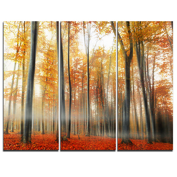 Designart Red And Yellow Leaves In Fall 3-pc. Canvas Art