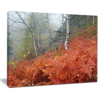 Designart Red Fern In Foggy Fall Fay Canvas Art