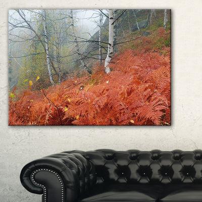 Designart Red Fern In Foggy Fall Fay Canvas Art