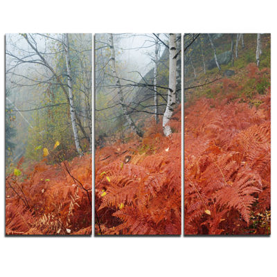 Designart Red Fern In Foggy Fall Fay 3-pc. Canvas Art