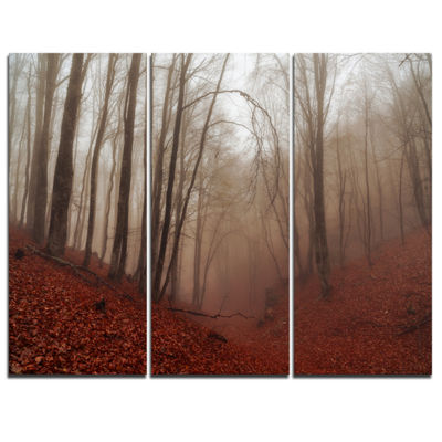 Designart Red Leaves In Foggy Fall Forest 3-pc. Canvas Art