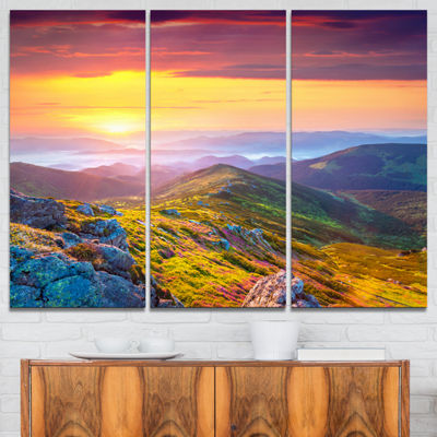 Designart Rhododendron Flowers In Colorful Hills 3-pc. Canvas Art