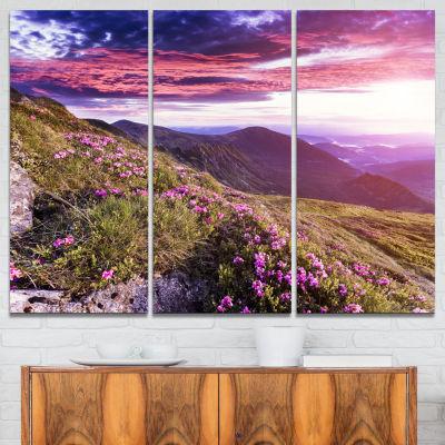 Designart Rhododendron Flowers In Hills 3-pc. Canvas Art