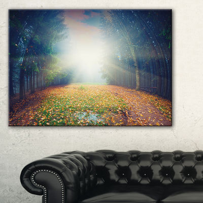 Designart Rising Sun Over Arched Forest Canvas Art