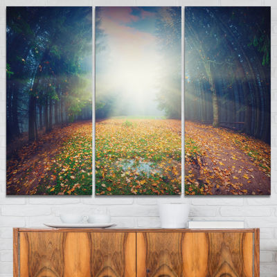 Designart Rising Sun Over Arched Forest 3-pc. Canvas Art