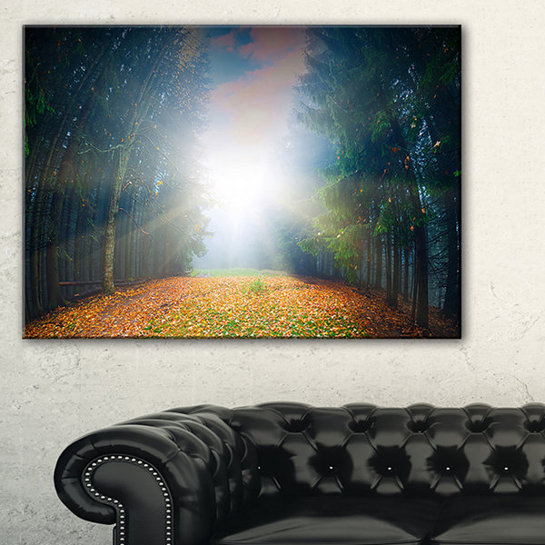 Designart Rising Sun Over Colorful Forest Canvas Art