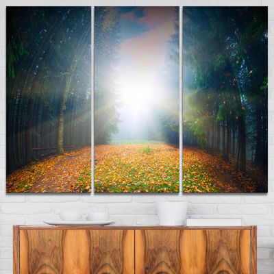 Designart Rising Sun Over Colorful Forest 3-pc. Canvas Art