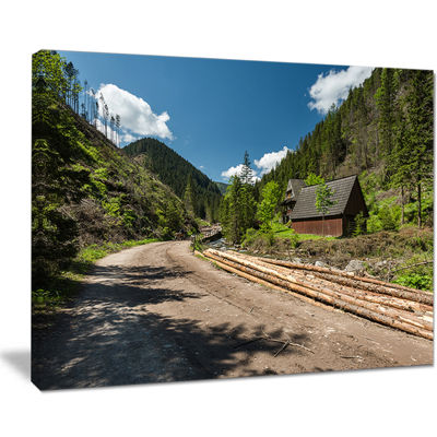 Designart Road In Chocholowska Valley Canvas Art