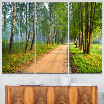 Designart Road In Green Morning Forest 3-pc. Canvas Art