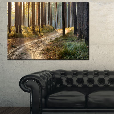 Designart Road In Thick Morning Forest Canvas Art