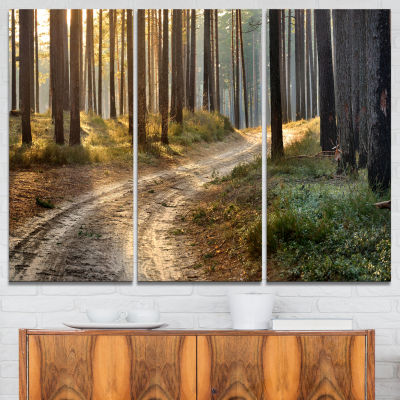 Designart Road In Thick Morning Forest 3-pc. Canvas Art