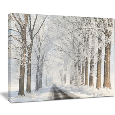 Designart Road Through Frosted Forest Canvas Art