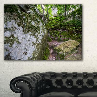 Designart Large Rocks In Deep Moss Forest Canvas Art