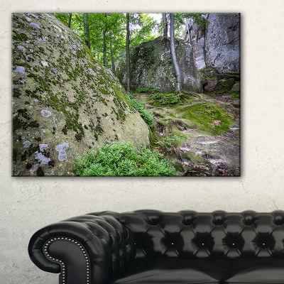 Designart Rocky Deep Moss Forest Ukraine Canvas Art