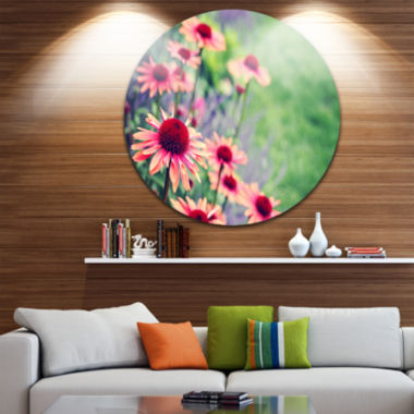 Designart Beautiful Pink Echinacea Flowers FloralMetal Circle Wall Art