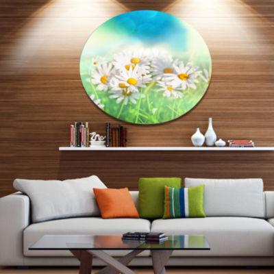 Design Art Little White Chamomiles in Garden Floral Oversized Circle Metal Artwork