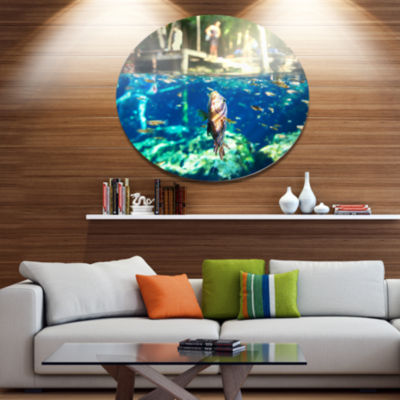 Design Art Large Fish in Ik Kil Cenote Mexico Landscape Wall Art on Metal Wall