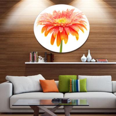 Design Art Large Orange Gerbera on White Disc Floral Circle Metal Wall Decor
