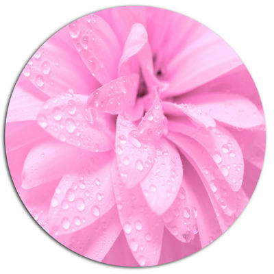 Design Art Abstract Pink Flower with Petals Disc Floral Circle Metal Wall Decor