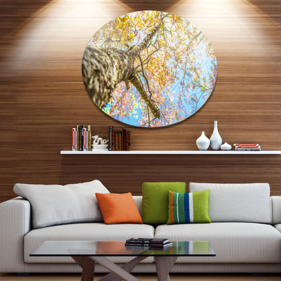 Design Art Under Branch of Yellow Cherry Tree Trees Metal Circle Wall Art