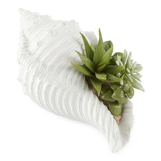 JCPenney Home Seashell With Greenery Tabletop Decor