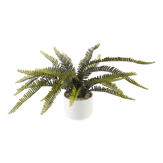 JCPenney Home Fern Floral Arrangement
