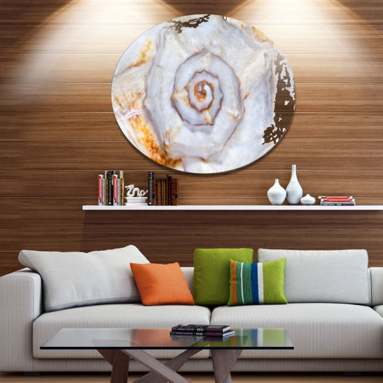 Designart Great Skeleton of Sea Shell Disc Oversized Animal Wall Art