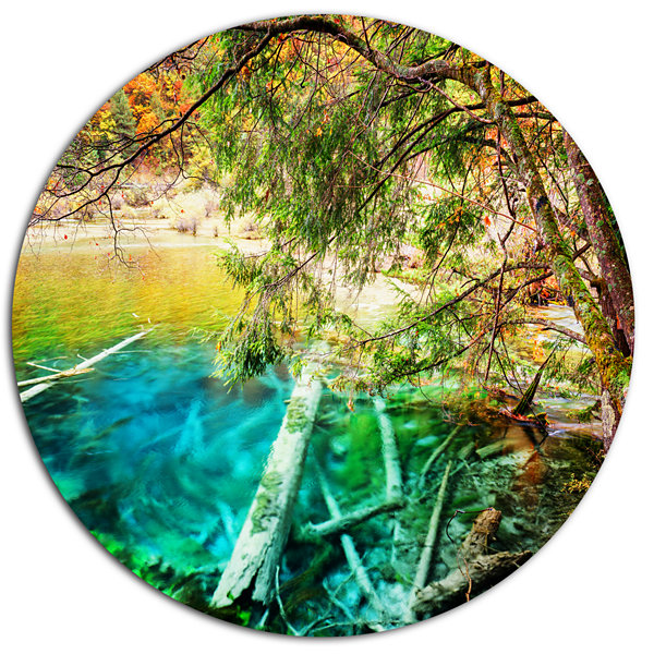 Designart Colorful Lake with Tree Trunks Disc Landscape Metal Circle ...