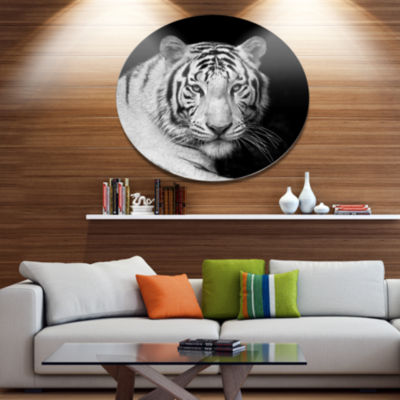 Designart Staring Bengal White Tiger Disc Contemporary Animal Metal Circle Wall Decor