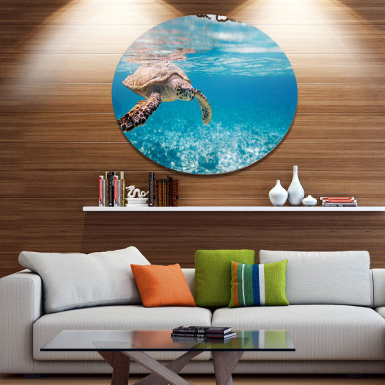 Designart Large Hawksbill Sea Turtle Disc AbstractMetal Circle Wall Decor