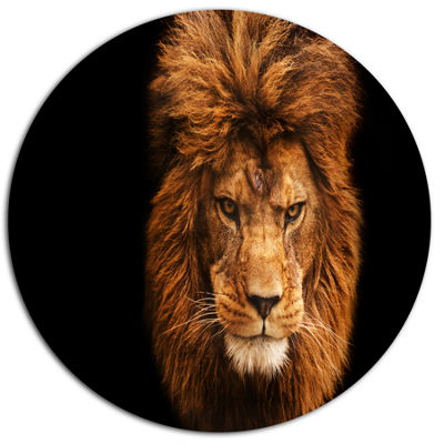 Designart Face of Male Lion on Black Ultra VibrantAbstract Metal Circle Wall Art