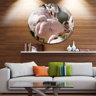 Designart Pat of Flamingos Close Up Ultra VibrantAbstract Metal Circle Wall Art