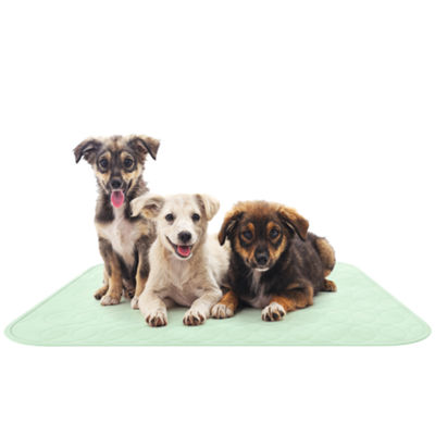 Petmaker 2-Pack Puppy Training Reusable Pads