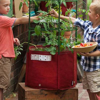 BloemBagz Tomato Planter Grow Bag - 15 Gallon
