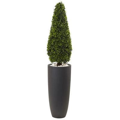 """50"""" Boxwood Topiary"""