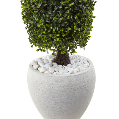 "41"" Boxwood Topiary"