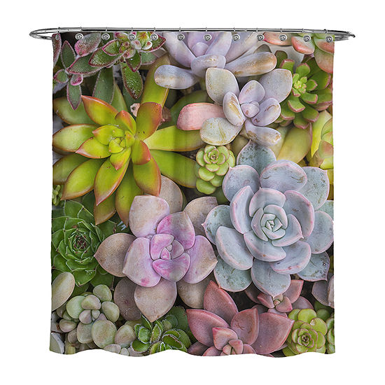 Avanti Succulents Shower Curtain