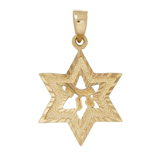 14K Yellow Gold Diamond Cut Star of David Charm