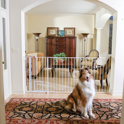 Carlson Super Wide and Tall Maxi Pet Gate