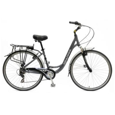 Hollandia Villa Commuter Women's Bicycle