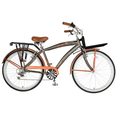 Hollandia M1 Land Men's Cruiser Bike