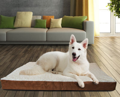 Paws & Pals Orthopedic Pet Bed