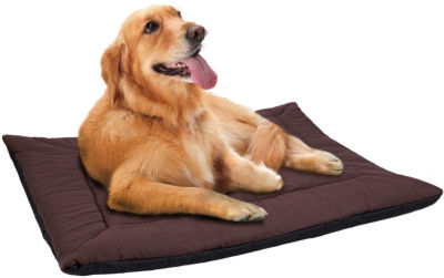 Paws & Pals Self Warming Pet Bed