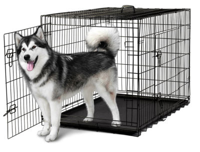 Oxgord PTCG01-48 48 x 27 x 30 in. Double-Door Easy Folding Metal Wire Pet Kennel Crate