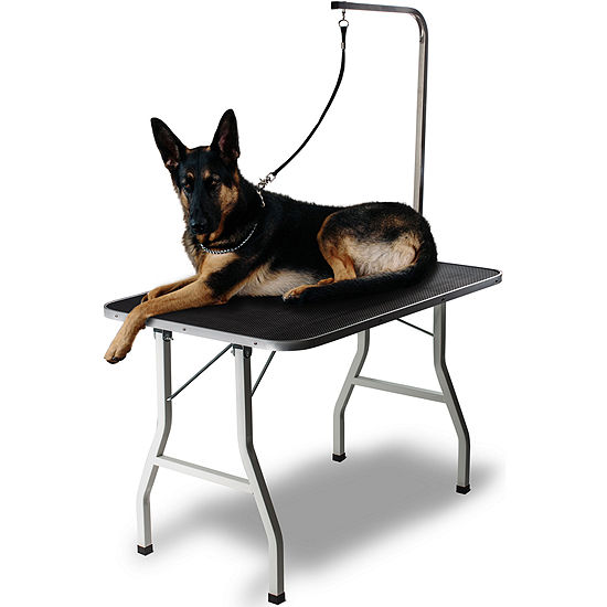 Grooming Table for Pet Dog or Cat