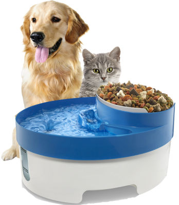 Paws & Pals Pet Fountain Water & Food Bowl