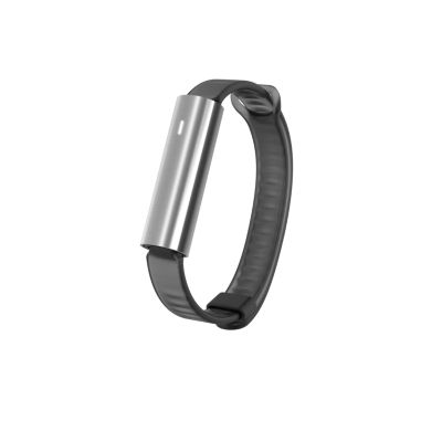 Misfit Ray Silicone Sport Band Activity Tracker
