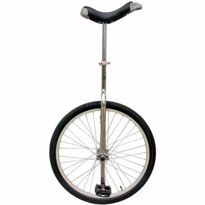 Fun Bike 24 Unicycle With Alloy Rim