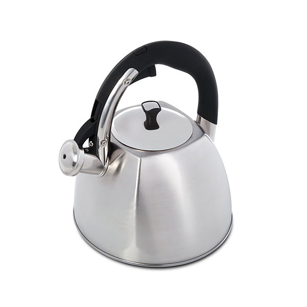 Mr Coffee Belgrove 2.5 Quart Brushed Stainless Steel Whistling Tea Kettle with Nylon Handle